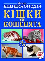 БАО Большая энциклопедия Кошки и котята, фото 1