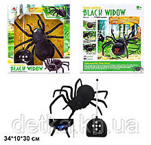 Павук (чорна вдова) 779 р. на у.батар.світ