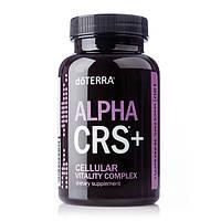 «Альфа СІ-АР-ЕС+» Комплекс для підвищення клітинної енергії / Alpha CRS+, 120 капсул