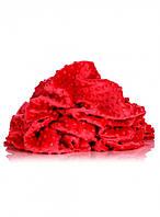 Плюш минки (MINKY) красный плотность 360 г/м2