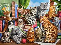 """Пазли """"Кішки"""" Castorland 2000 елементів"""