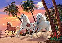 """Пазлы """"Белые лошади"""" Castorland 1500 элементов, фото 1"""