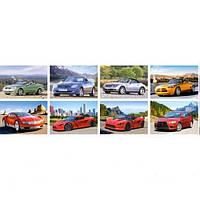 Пазлы ''Автомобили'' Castorland 120 mini элементов