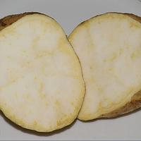 Маточный клубень Батат Сумор (Sumor) еле сладкий ранний урожайный очень лежкий, фото 1