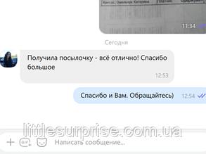 Екатерина, г. Нетишин