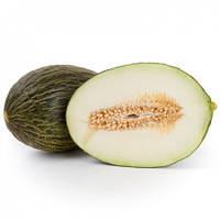 Дыня Бравура F1 (Bravura RZ), 1000 семян (тип Пиел де Сапо, плод 2,5-3,0 кг)