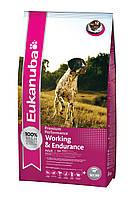 Корм для собак при повышенных нагрузках Eukanuba Adult Performance Working & Endurance