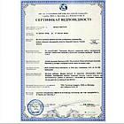 Трифала чурна/порошок (Triphala Choorna, SDM), 100 грамм - Аюрведа премиум качества Бутик РОСА, фото 5