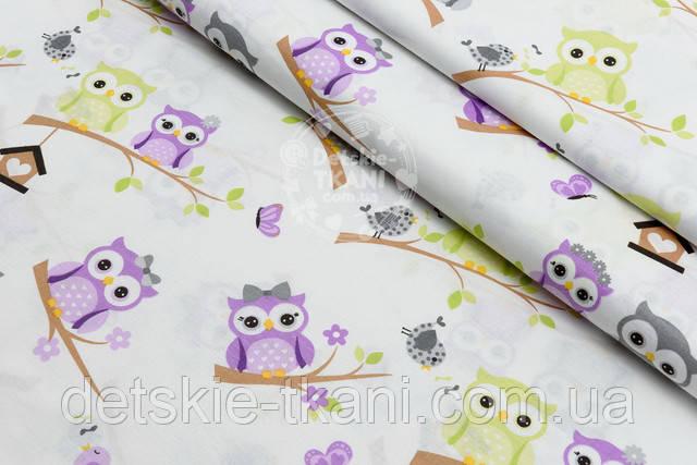 Поплиновая ткань с совами на ветке