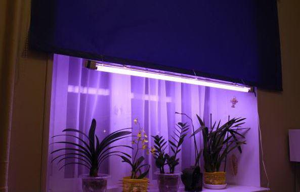 Светильник  2*36 Вт + лампа для растений и аквариумов Osram Fluora 36 Вт фитолампа +лампа Osram 6500K