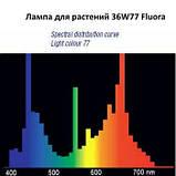 Світильник 2*36 Вт + лампи для рослин і акваріумів Osram Fluora 2*36 Вт фитолампа, фото 4