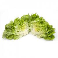 Семена салата дуболистного Кириния (Kirinia RZ) зеленый, 5000 сем., дражже, Rijk Zwaan
