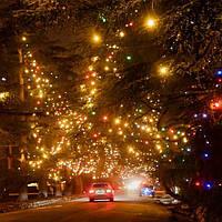 Гирлянды светодиодные уличные
