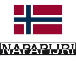 Шапки Napapijri