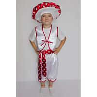 Карнавальный костюм Мухомор №3 Мальчик, фото 1