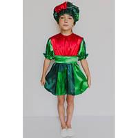 Карнавальный костюм Арбуз №2, фото 1