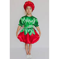 Карнавальный костюм Помидор №3, фото 1