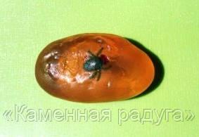"""Мыльный камень ручной работы """"Янтарь"""". Эксклюзив!"""