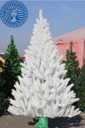 Ель элитная белая литая 210 см, фото 2