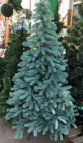 Ель элитная голубая литая 210 см, фото 2