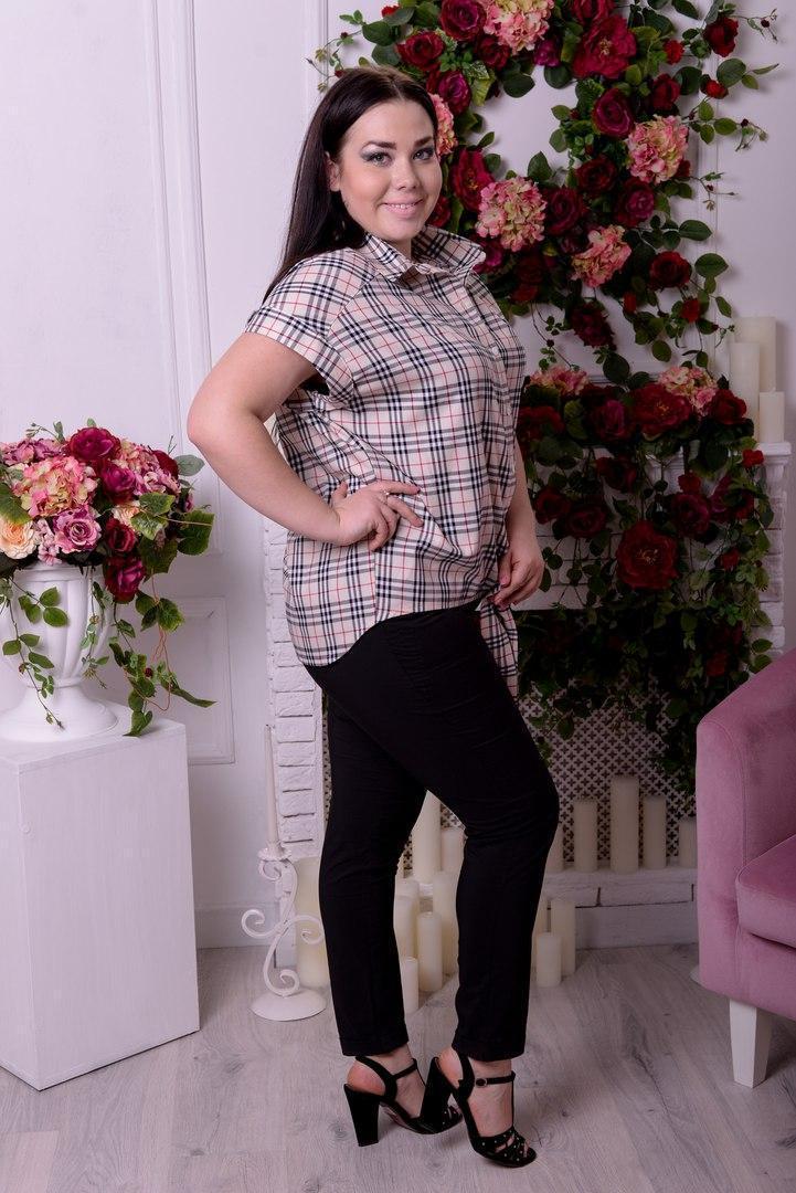 Женская блуза большого размера н-t10uk1301