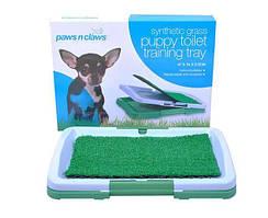 Лоток для собак, собачий туалет для малих і середніх пород
