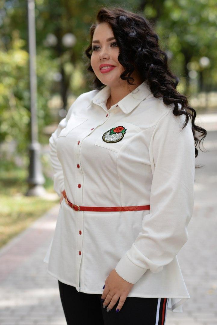 Женская кофта-баска в больших размерах под пояс 10uk191