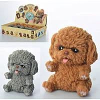 Антистресс игрушка Животное A186-DB, собака, 7см,