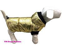 """Жилетка зимняя для собак """"Золото"""" ( размер 6 / М)."""