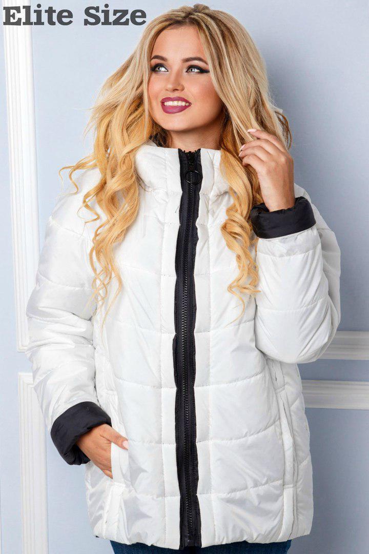Женская куртка батал с молнией и капюшоном 6uk571