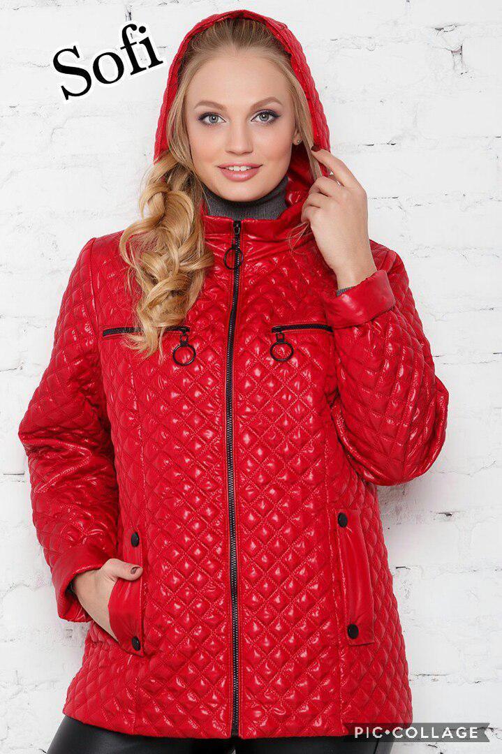 Женская стеганная куртка батал на молнии в расцветках 69uk609