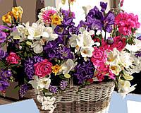 Картина по номерам цветы в корзине