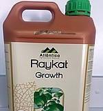Жидкое удобрение Raykat Growth (Райкат Рост), 25л
