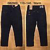 Брюки котоновые утепленные для мальчика оптом, Grace, 116-146 см,  № B82660