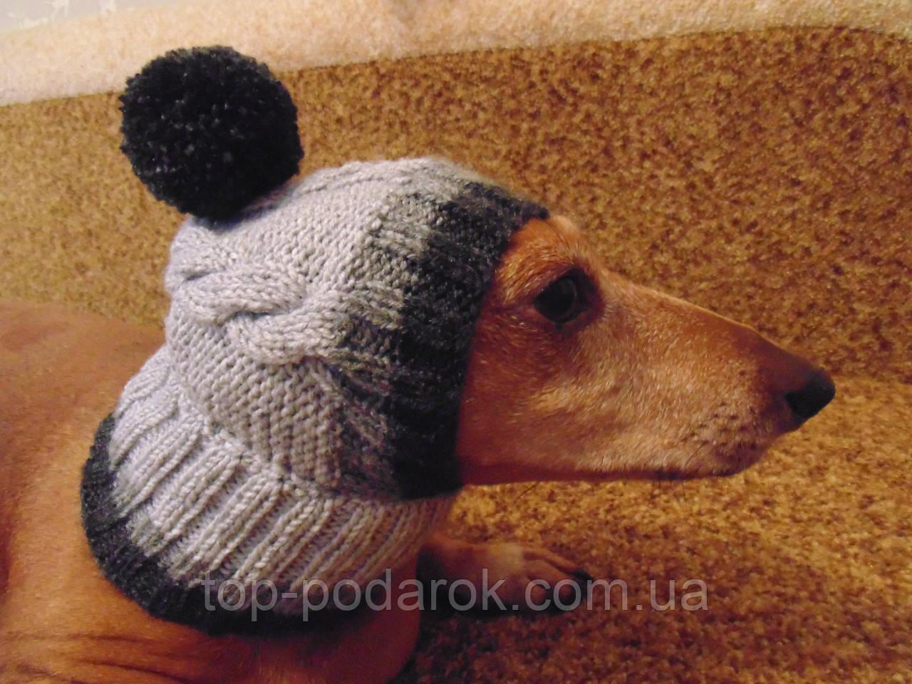 шапка для собакишапка для таксыодежда для домашних животных цена