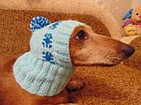 Шапка для собаки,шапка для такси,одяг для домашніх тварин, фото 4