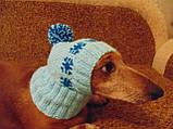 Шапка для собаки,шапка для такси,одяг для домашніх тварин, фото 5