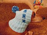 Шапка для собаки,шапка для такси,одяг для домашніх тварин, фото 6