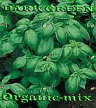 Семена, Базилик зеленый ДАРК ГРИН / DARK GREEN (проф.пакет 50 грамм) Semo (Чехия), фото 2