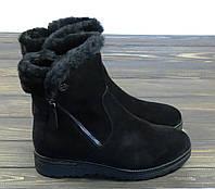 Зимние замшевые ботинки Anna Lucci, фото 1