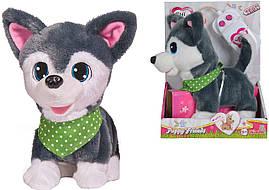 Друзья щенки на пульте Чи Чи Лав собачка чичилав щенок Chi Chi Love 5893243