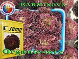 Салат КАРМИНОВА / KARMINOVA,  ТМ SEMO (Чехия) проф. пакет 1000 семян, фото 2