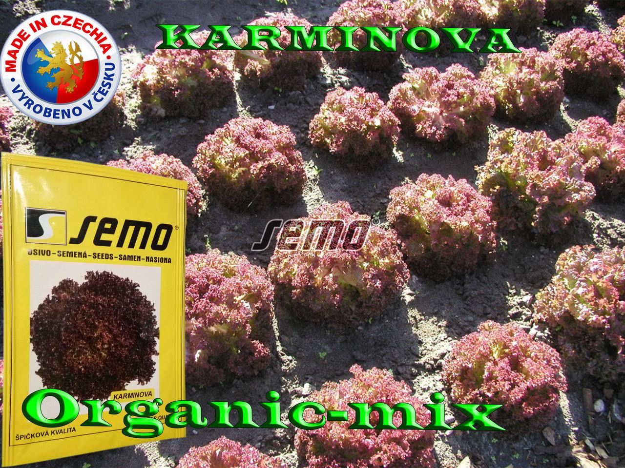 Салат КАРМИНОВА / KARMINOVA,  ТМ SEMO (Чехия) проф. пакет 5000 семян