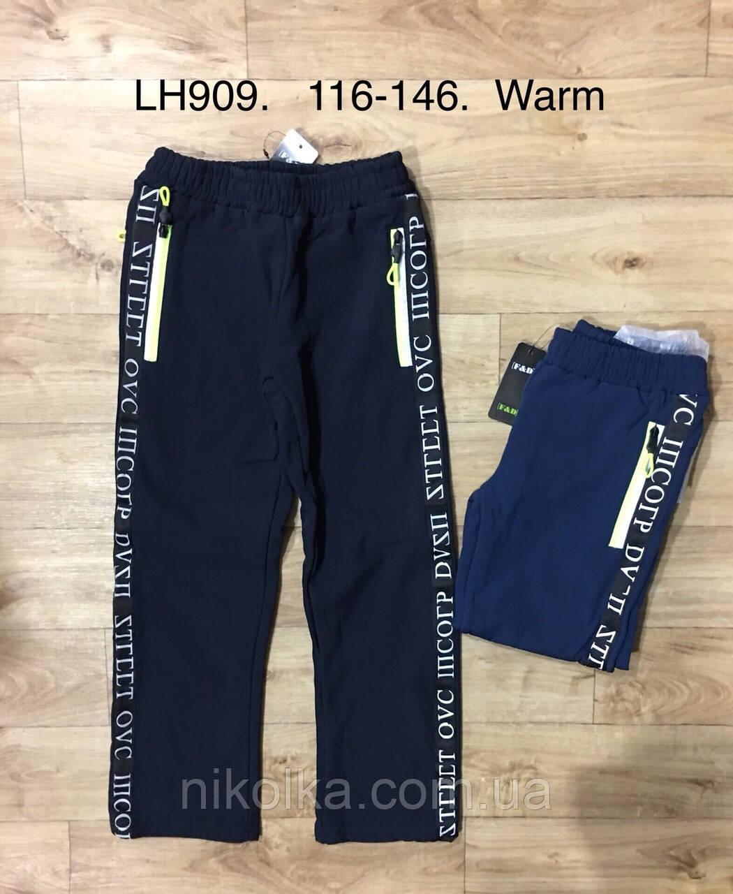 Лыжные брюки на флисе для мальчиков оптом, F&D, 116-146 рр., арт. LH909