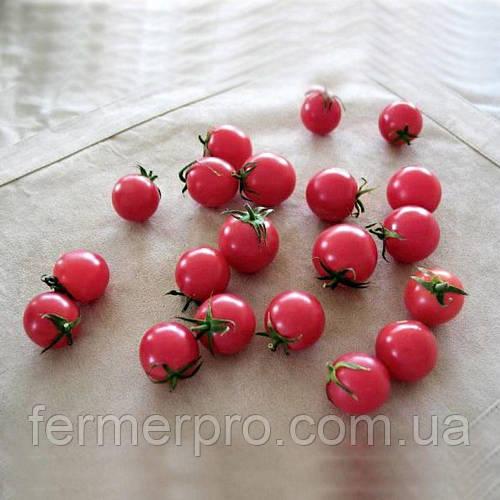 Семена томата Рианна F1 \ Rianna F1 250 семян Sakata