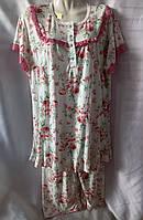 Пижама с цветочным принтом/ кружевом коттоновая женская батальная (2XL/52), фото 1