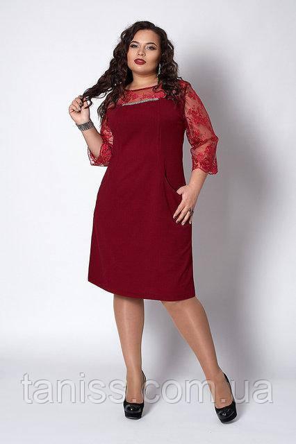 Женское  нарядное офисное платье , креп трикотаж, кружевной рукав р. 52,54,56 бордо   (576)