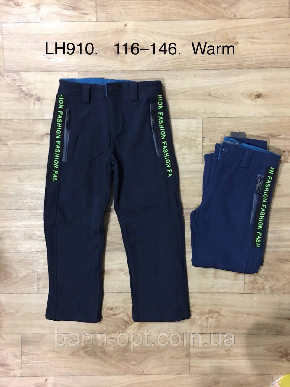 Лижні штани утеплені для хлопчиків оптом, F&D, рр 116-146
