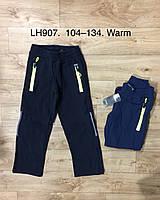 Спортивные штаны утепленные для мальчиков оптом, F&D, 104-134 рр