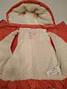 Зимняя куртка для девочки, фото 2